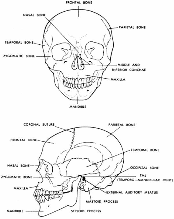 FMST Student Manual - FMST 1406 - Manage Head, Neck, and Face Injuries