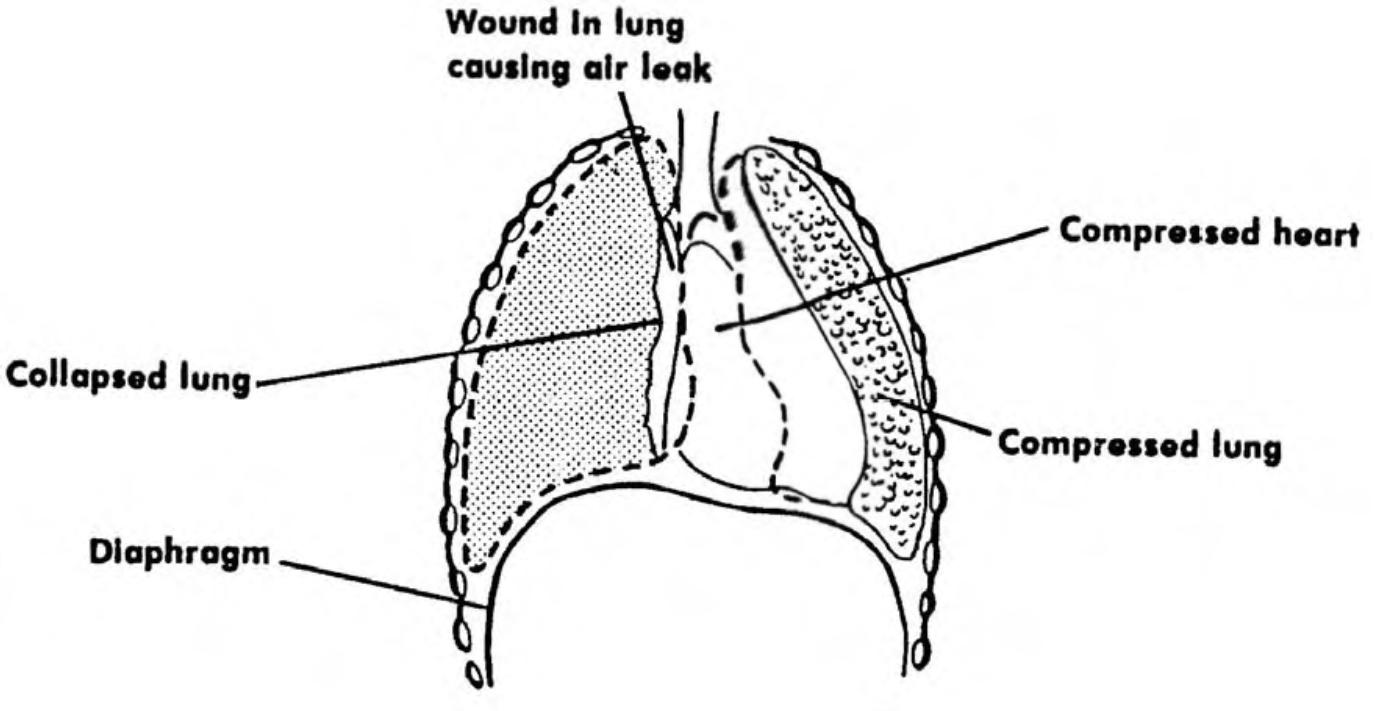 viagra usa lung jualpembesarpenisasli com agen resmi